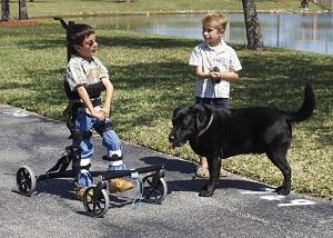 boys-with-dog-rev2